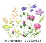 watercolor field grass 3 | Shutterstock . vector #126224585
