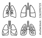 lung icon set. outline set of...   Shutterstock .eps vector #1262390725
