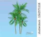 vector of palm tree icons on... | Shutterstock .eps vector #1262571118
