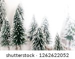 christmas pine tree in winter... | Shutterstock . vector #1262622052