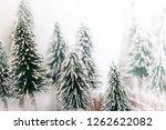 christmas pine tree in winter... | Shutterstock . vector #1262622082