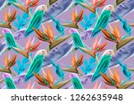 seamless pattern with parrots... | Shutterstock . vector #1262635948