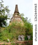 thai stupa be left uncultivated ... | Shutterstock . vector #1262644465