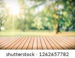 blur park and green nature... | Shutterstock . vector #1262657782