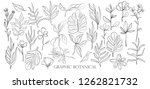 hand drawn set sketch style... | Shutterstock .eps vector #1262821732