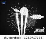 close view of cricket ball... | Shutterstock .eps vector #1262917195
