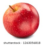 red apple isolated on white.... | Shutterstock . vector #1263056818
