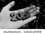 plastic numbers 2019 year in... | Shutterstock . vector #1263110458