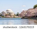 Washington Dc  Usa   April 5 ...