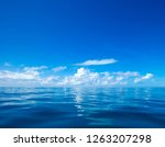 clouds on blue sky over calm... | Shutterstock . vector #1263207298