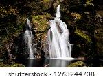 a waterfall in schwarzwald ...   Shutterstock . vector #1263244738
