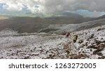 iliniza  cotopaxi   ecuador  ... | Shutterstock . vector #1263272005