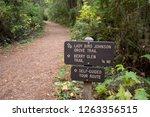 lady bird johnson grove trail... | Shutterstock . vector #1263356515