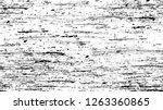 black and white stripes in...   Shutterstock .eps vector #1263360865