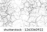 grunge watercolor dry brush... | Shutterstock .eps vector #1263360922