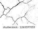 black and white grunge urban... | Shutterstock .eps vector #1263597055