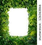 jungle border blank frame with... | Shutterstock . vector #126363866