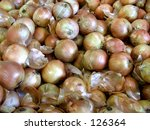 onions  several  | Shutterstock . vector #126364