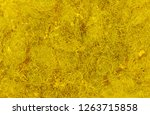 gold plated with computer... | Shutterstock . vector #1263715858