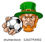 a leprechaun soccer football... | Shutterstock .eps vector #1263793402
