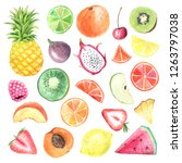 set of hand painted watercolor... | Shutterstock . vector #1263797038