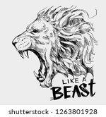 Head Of Roaring  Lion. Hand...