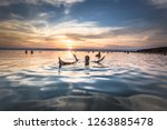 dead sea   october 05  2018 ... | Shutterstock . vector #1263885478