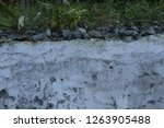 old plaster wall. stones  grass ... | Shutterstock . vector #1263905488