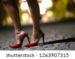 wonderful female shoes with...   Shutterstock . vector #1263907315