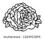 flower rose  black and white.... | Shutterstock .eps vector #1263921895