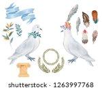 pigeon clip art digital drawing ... | Shutterstock . vector #1263997768