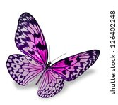 Stock photo pink butterfly flying isolated on white background 126402248