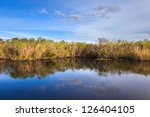 Everglades Pond Seen From The...