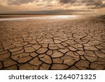 large dry field of land after a ... | Shutterstock . vector #1264071325