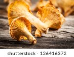 Chanterelle Mushrooms. Objects...