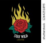 wild fire rose fashion... | Shutterstock .eps vector #1264251895
