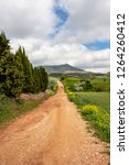 unpaved country road on the... | Shutterstock . vector #1264260412