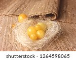 natural amber beeswax 108 loose ... | Shutterstock . vector #1264598065