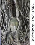 iconic buddha head entwined in... | Shutterstock . vector #1264817392
