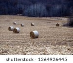 harvested field in late autumn. ... | Shutterstock . vector #1264926445