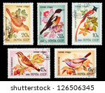ussr  circa 1981  a set of... | Shutterstock . vector #126506345