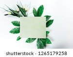 green sticky note with green... | Shutterstock . vector #1265179258