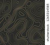 terrain topography  seamless... | Shutterstock .eps vector #1265314585