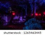 la canada flintridge  ca usa  ... | Shutterstock . vector #1265463445