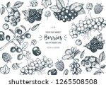 berry hand drawn  vector... | Shutterstock .eps vector #1265508508