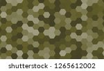 hexagonal grid pattern with... | Shutterstock . vector #1265612002