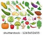 stock vector set of vegetables... | Shutterstock .eps vector #1265652655