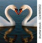 swans heart | Shutterstock . vector #126585002