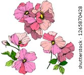 vector pink rosa canina. floral ... | Shutterstock .eps vector #1265870428