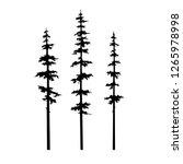 tree pine  set coniferous... | Shutterstock .eps vector #1265978998